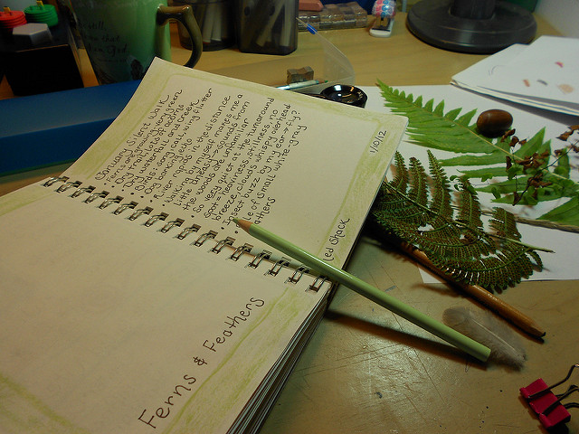 Ferns and Feathers nature journal