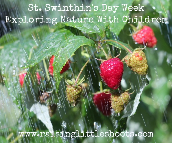 St Swithins Day week.jpg