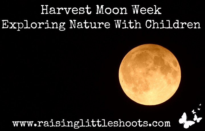 Harvest Moon Week