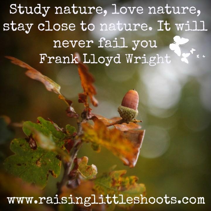 study nature.jpg
