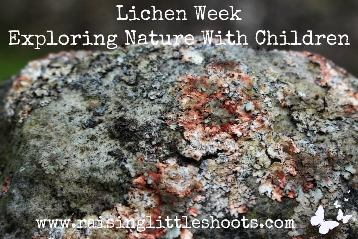 Lichen Week.jpg