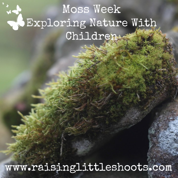 Moss Week