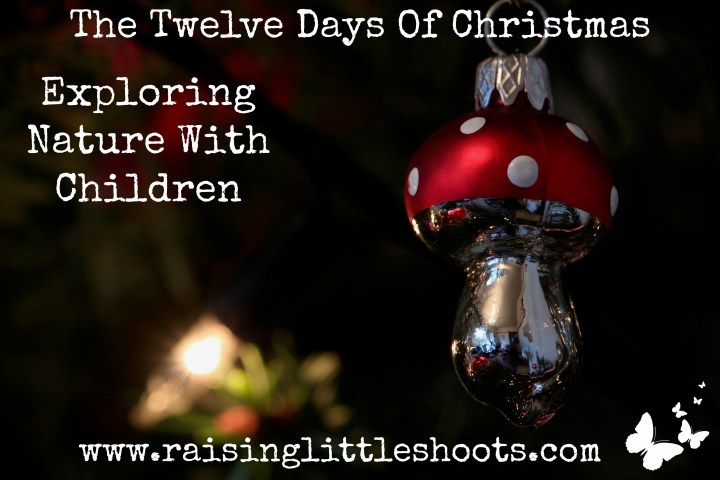 The Twelve Days Of Christmas.jpg