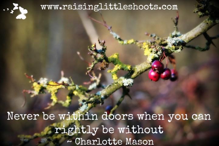 within doors.jpg