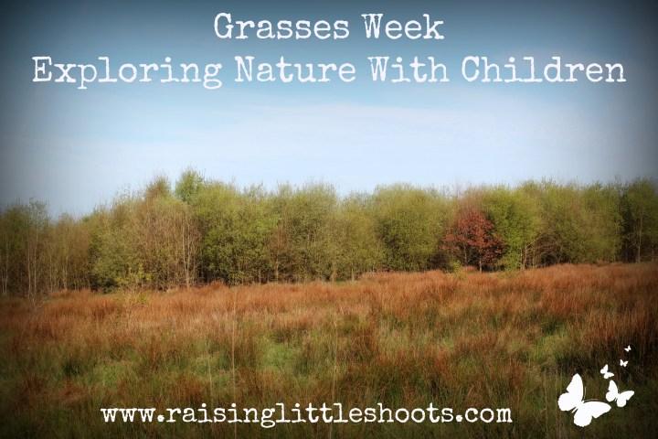 Grasses week.jpg