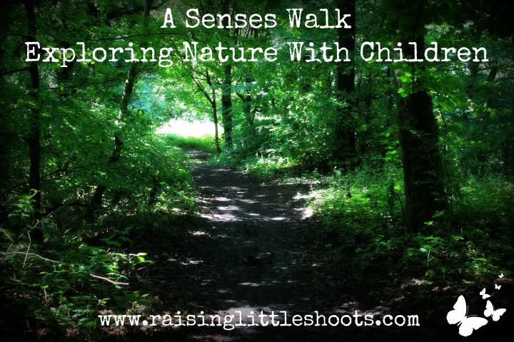 Senses walk