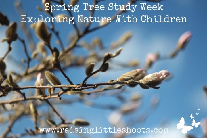 spring tree study week.jpg