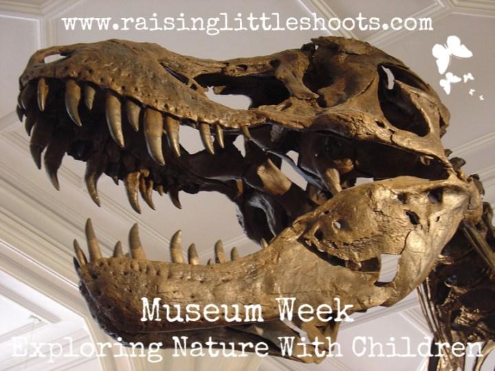 Museum Week.jpg