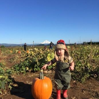 """""""Where is the Pumpkin?"""""""