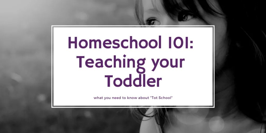 Homeschool toddlers doesn't mean extra work. It's just an extension of parenting.