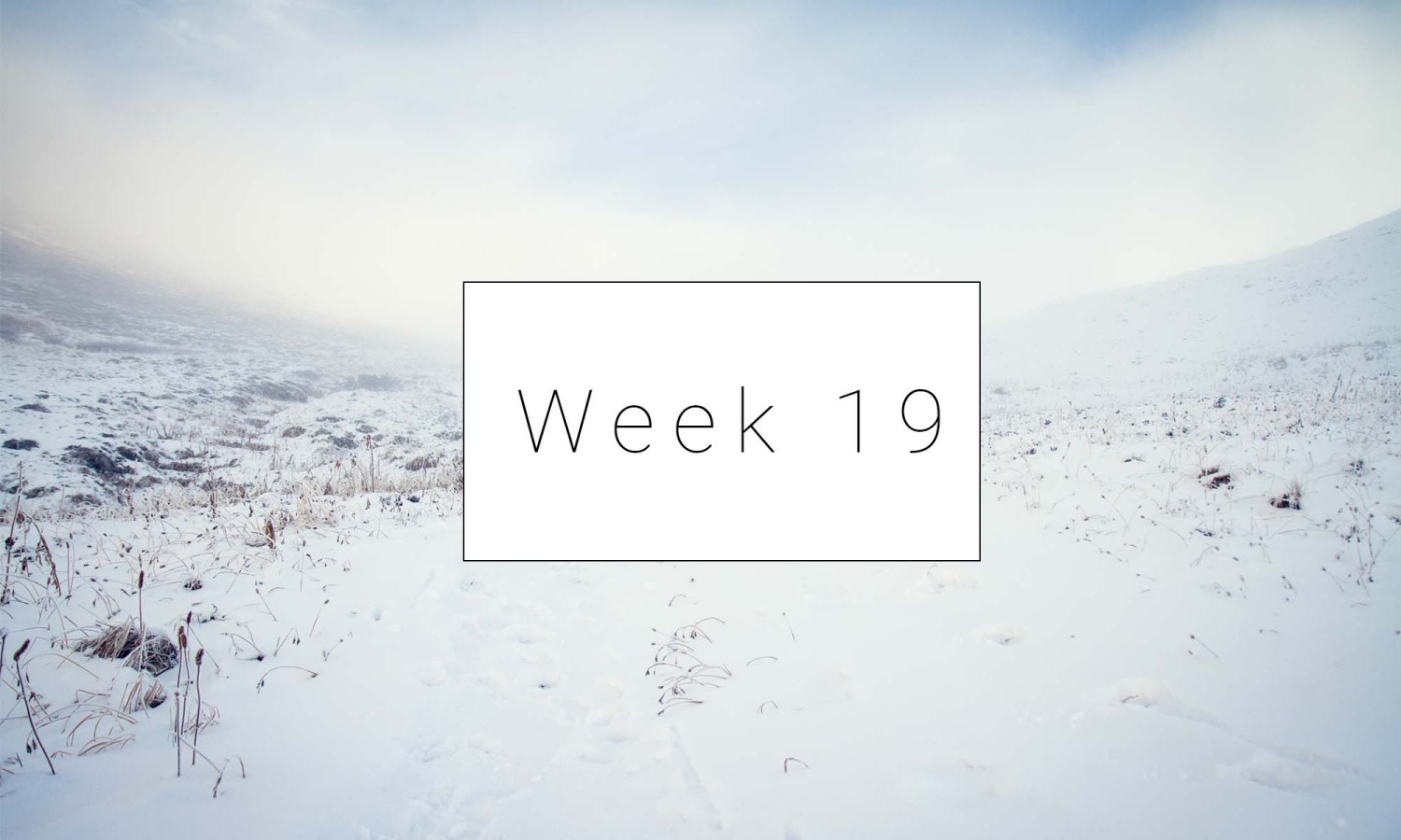 Classical Conversations – Week 19 – Lesson Plan