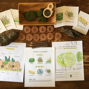 free nature study homeschool