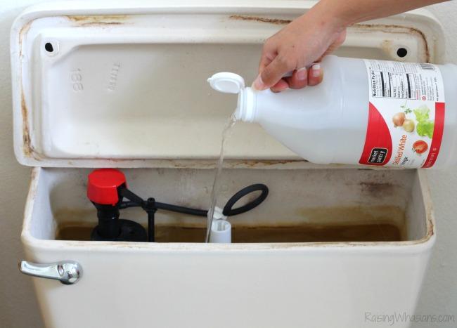 Hand pouring bottle of vinegar into toilet tank
