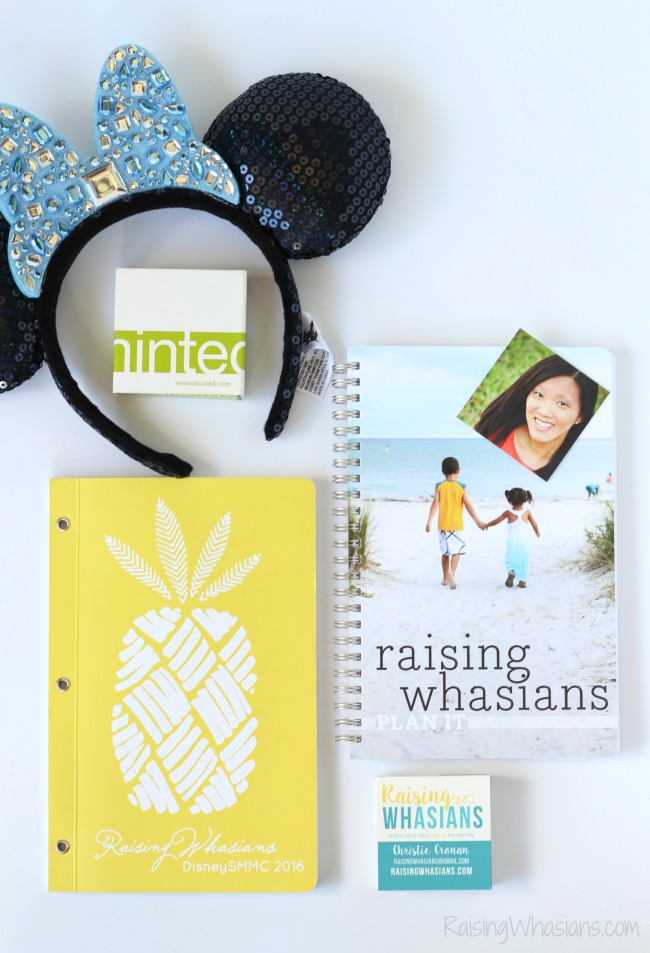 Minted review Disney SMMC