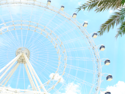 Picnic lunch under the Orlando eye