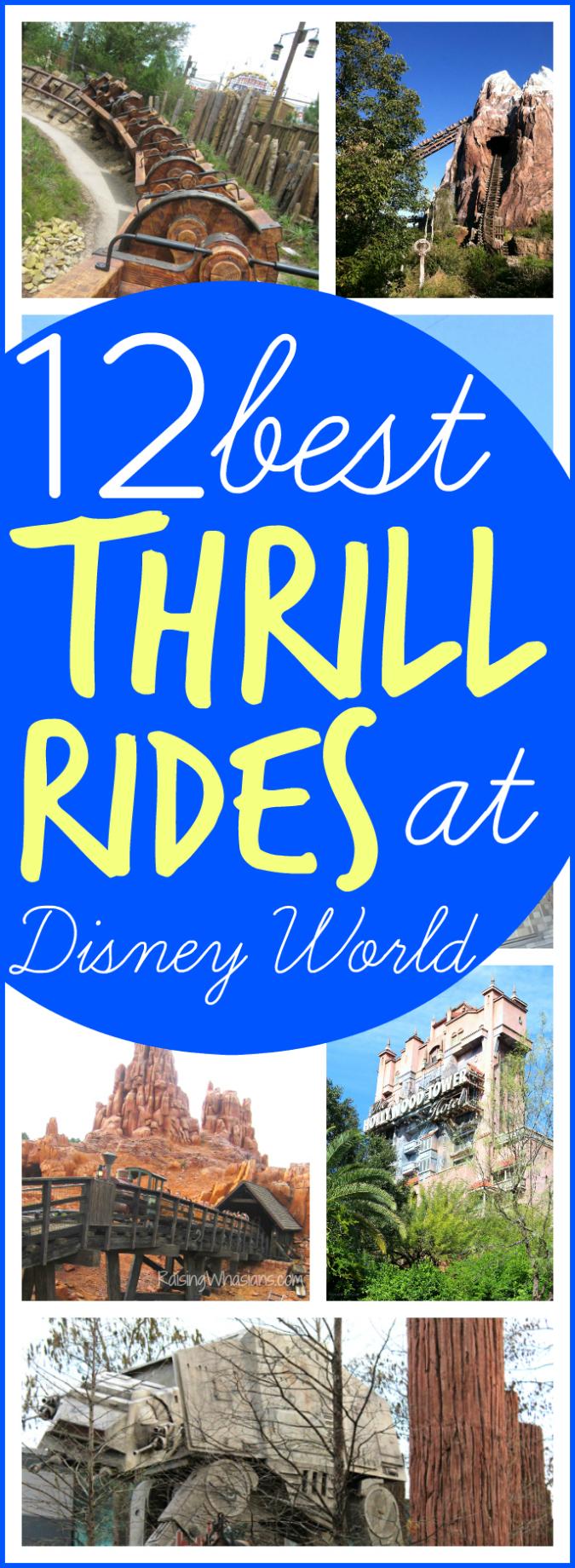 12 best Walt Disney world thrill rides