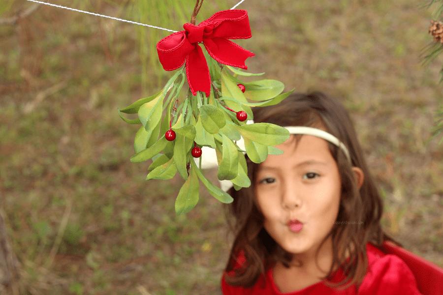 Christmas kissing booth ideas
