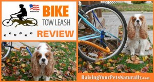 Dog Product Reviews For Active Dogs: Bike Tow Leash Review