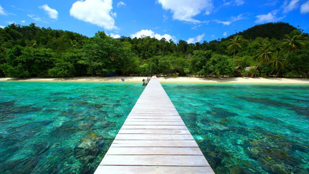 Where is Raja Ampat Biodiversity Eco Resort - landing stage