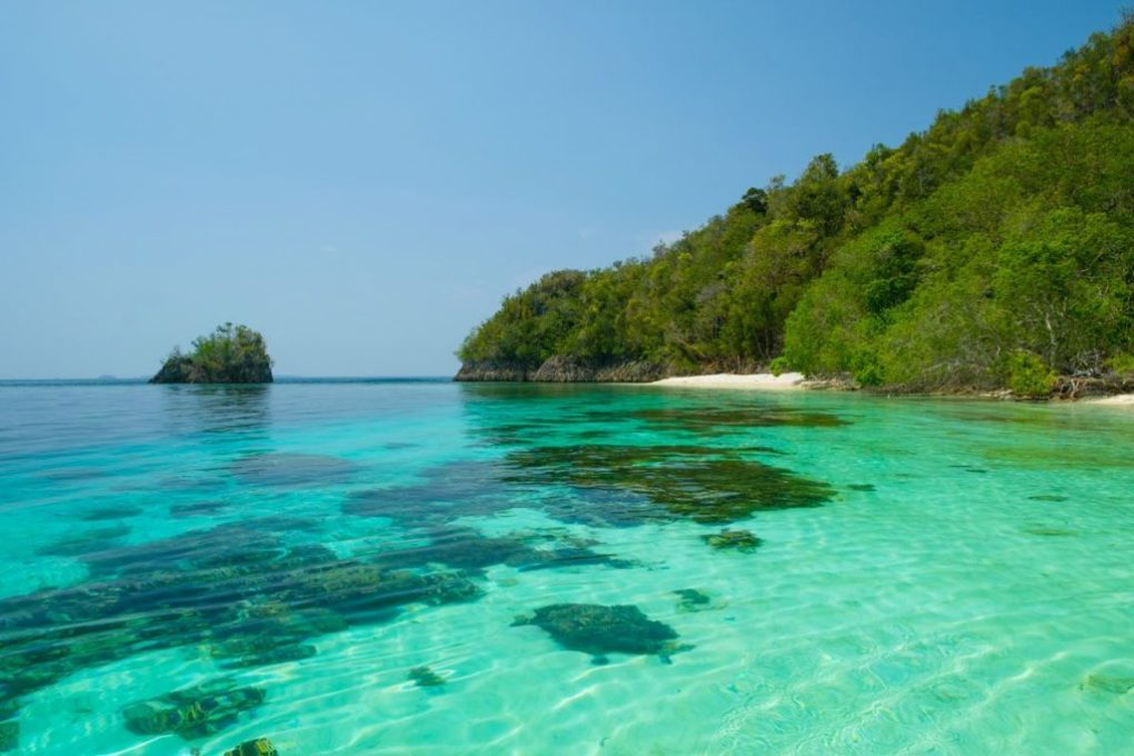 Raja Ampat Excursions - Around Gam Island