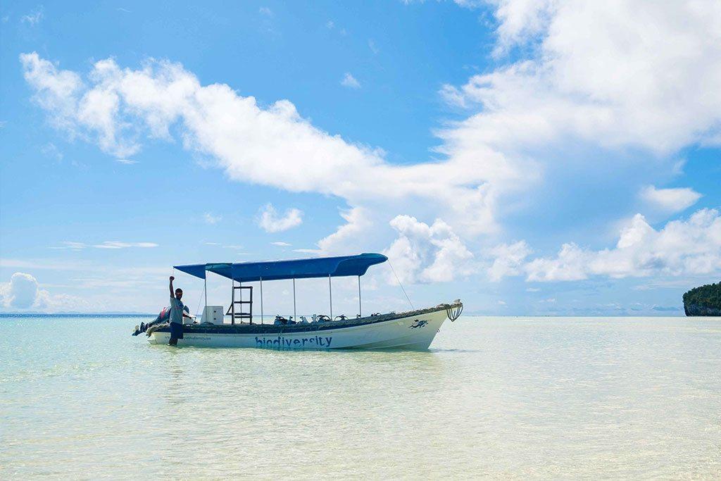 raja ampat dive resort boat
