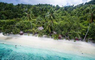 Eco dive master internship - raja ampat biodiversity eco resort