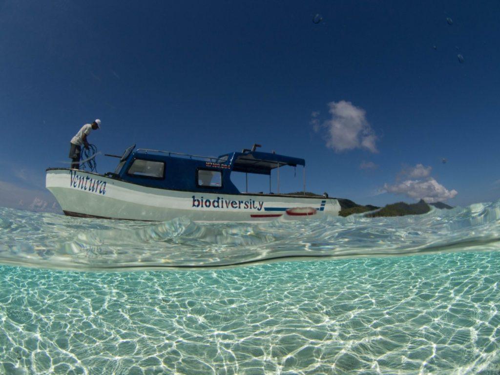 Tauchen in Indonesien boot