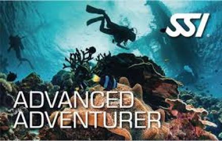 Raja Ampat biodiversity- Eco diver courses
