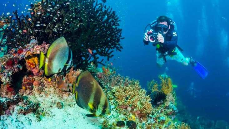 Raja Ampat es un auténtico resort para buceadores en indonesia