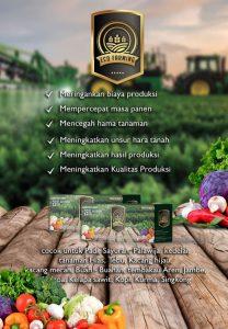 PT BEST Selain Memproduksi Eco Racing juga Memproduksi Eco Farming
