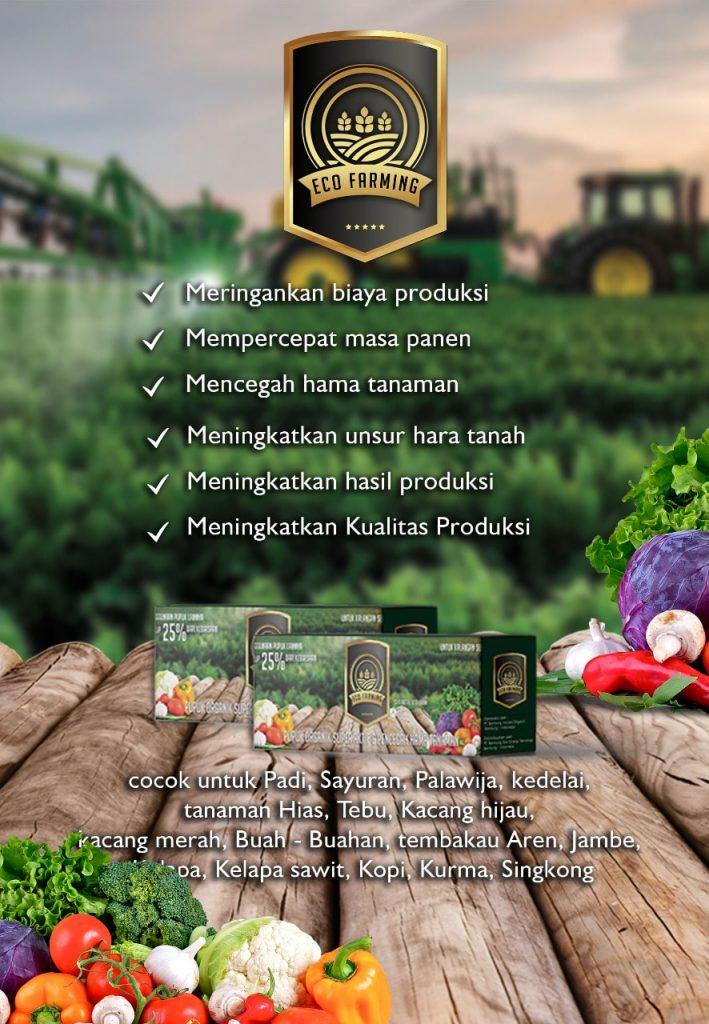 Kandungan dan Manfaat Unsur Hara Dalam Pupuk Organik Super Aktif Eco Farming