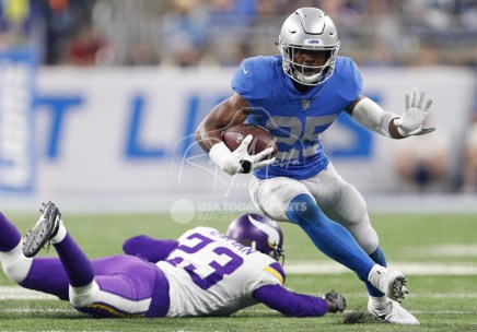 Nov 23, 2017; Detroit, MI, USA; Detroit Lions running back Theo Riddick (25) runs by Minnesota Vikings cornerback Terence Newman (23) during the third quarter at Ford Field. Mandatory Credit: Raj Mehta-USA TODAY Sports