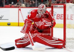 Feb 24, 2018; Detroit, MI, USA; Detroit Red Wings goaltender Jimmy Howard (35) makes a save during the first period against the Carolina Hurricanes at Little Caesars Arena. Mandatory Credit: Raj Mehta-USA TODAY Sports