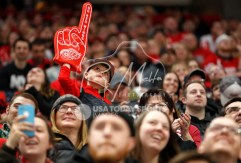 Apr 7, 2018; Detroit, MI, USA; Detroit Red Wings fan raises his foam finger during overtime against the New York Islanders at Little Caesars Arena. Mandatory Credit: Raj Mehta-USA TODAY Sports