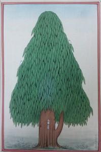 Ashoka Tree b008