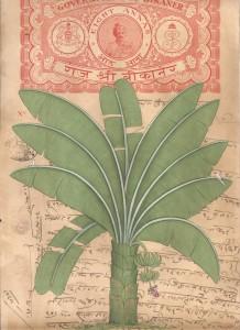 Banyan Tree c005