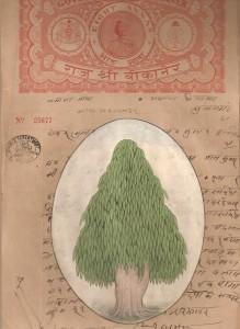Ashoka Tree c008