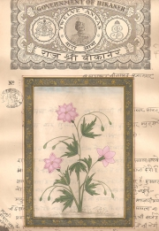 Mugal Flowers on old paper d024