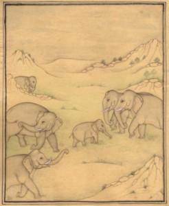 Elephant j004