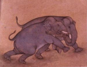 Elephant j010