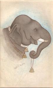 Elephant j011