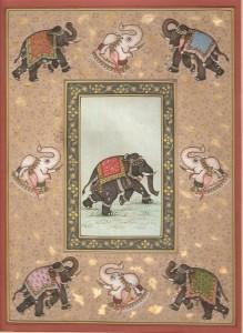 Elephant j015
