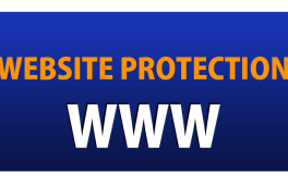 website protection techniques