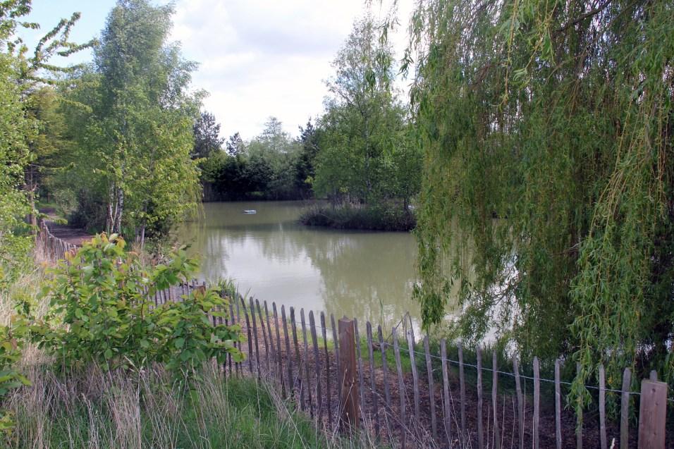 Heron Pond