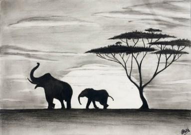 Elephants (Charcoal)