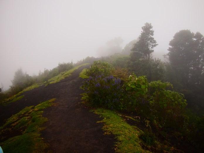 The path up Pacaya