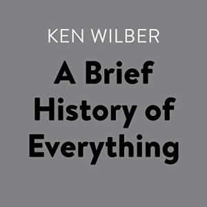 A Brief History of Everything audiobook cover art