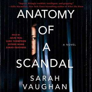 Anatomy of a Scandal audiobook cover art