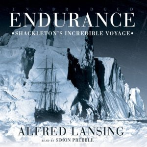 Endurance audiobook cover art