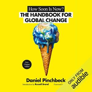 How Soon Is Now audiobook cover art